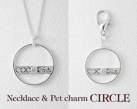 Necklace & charm - CIRCLE