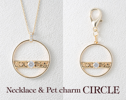 Necklace & charm - CRICLE